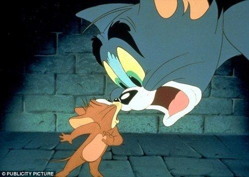 是由汤姆猫和杰瑞老鼠搭档出演的一部成功的短篇动画剧集.