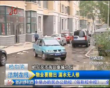哈尔滨海富康城小区多处水管漏水 小区路面成河