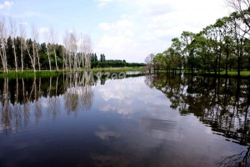 冬赏雪景夏游湿地太阳岛——哈尔滨人诗意地栖居