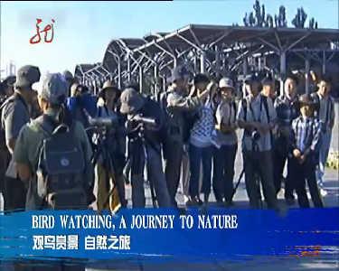 这就是黑龙江20121014