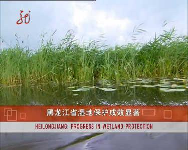 这就是黑龙江20121020