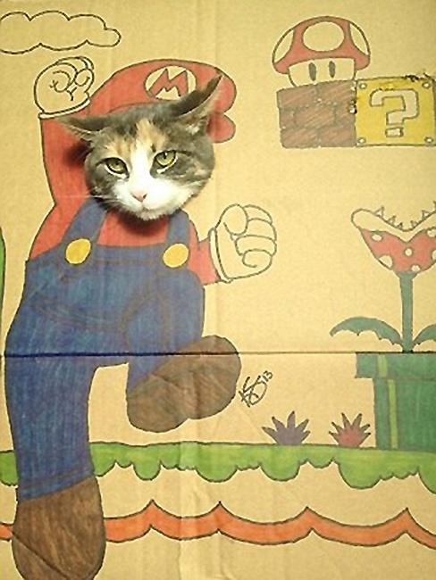 其中一只猫变成了一个强壮的肌肉男