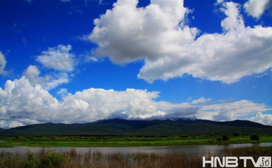 黑瞎子岛位于中俄边界的黑龙江、乌苏里江交汇处,又称抚远三角洲,面积三百多平方公里。根据《中俄国界东段补充协定》,黑瞎子岛一分为二,西侧靠近中国的一半岛屿归中国所有。黑瞎子岛湿地公园位于黑瞎子岛西侧,是为了保护黑瞎子岛湿地的原生动植物与生态环境而建设的。公园以水和湿地景观为主体,通过木栈道的形式组织游览线路。公园里,昔日东北三宝之一的乌拉草,成簇成片。