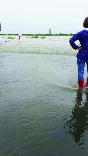黑瞎子岛中方区域超9成被淹没景观大道变水道