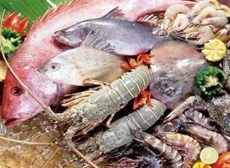 十一长假来临 哈达海鲜市场高档海鲜礼盒忙降价