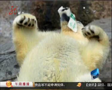 饲养员 动物园 牛奶来源:黑龙江网络广播电视台