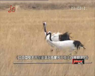 新闻夜航(卫视版)20131120