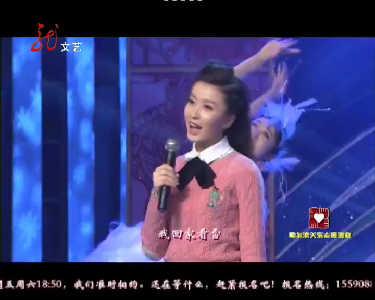黑龙江电视台2014年主持人春节联欢晚会