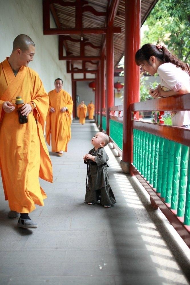 """西禅寺庙拍的""""超萌小和尚""""."""
