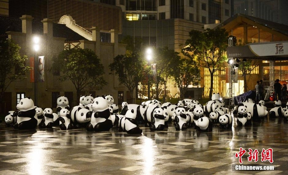 野生动物保护 街头宣传