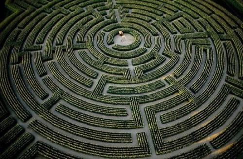 世界上最大的树篱迷宫:北爱尔兰castewallan森林公