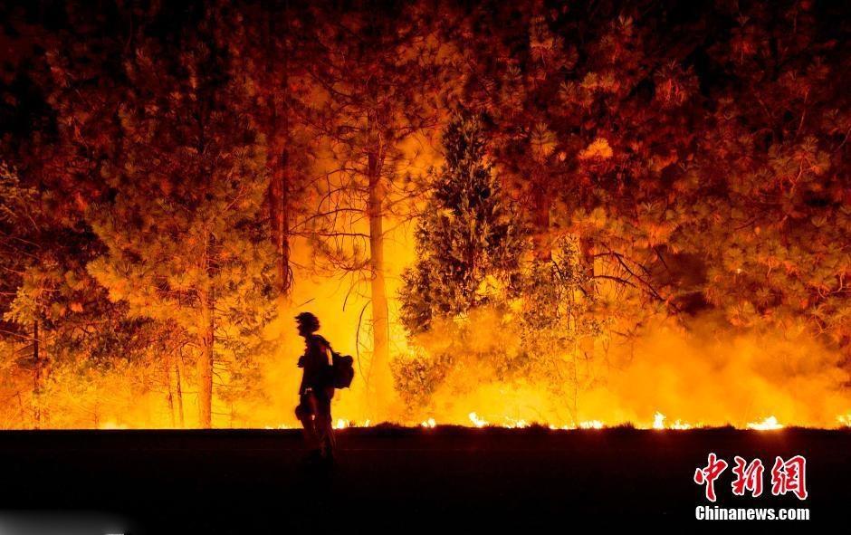 美国加州森林火光冲天 消防员路边观望(组图)
