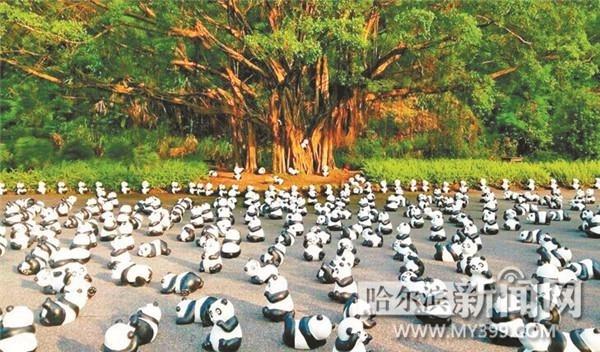 千只仿真熊猫将亮相太阳岛风景区.