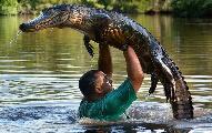 美国导游徒手举鳄鱼过头顶 嘴对嘴喂食(组图)