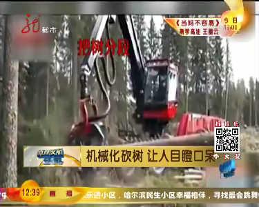 机械化砍树让人目瞪口呆