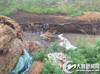 牡丹江永政村粉条厂废水直排大坑中(图)