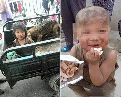 河南7岁男童遭虐待与猪共处 四季睡院里