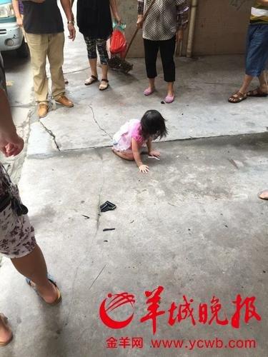 广州2岁女童从5楼坠下 砸中汽车后站起(组图)
