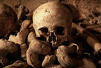 巴黎现地球最恐怖客房:与数百万副骷髅同睡