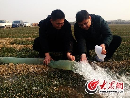 网曝寿光农田被污染 实为生态改良盐碱地