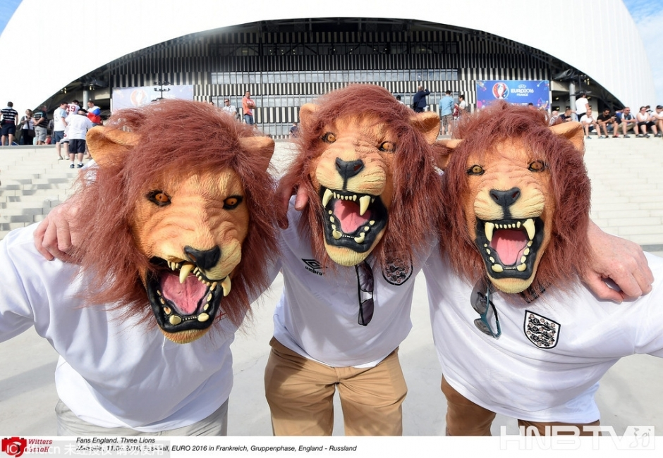 欧洲杯成了动物总动员(组图)