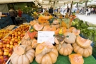 德国巴伐利亚州的水果摊,南瓜丰收了