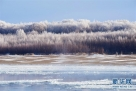 黑龙江呼玛江段拍摄的雾凇景色