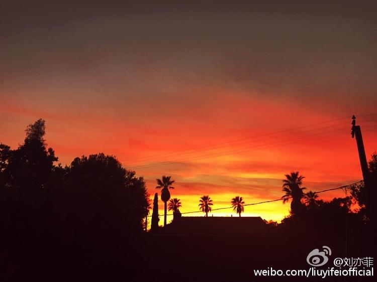 夕阳风景黑白剪影