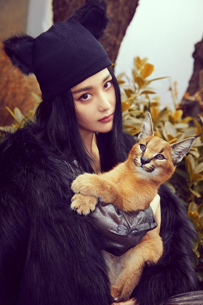 张馨予抱薮猫拍写真美艳