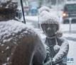 1月10日,在德国巴特菲尔伯尔,雪落在喷泉池的雕像上。