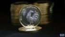 这是1月4日在江苏省淮安市中国农业银行一网点拍摄的鸡年纪念币。当日,由中国人民银行发行的鸡年纪念币开始兑换,纪念币材质为双色铜合金,面额10元,发行数量5亿枚。 新华社发(赵启瑞 摄)