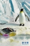 """王企鹅Queen站在鲭鱼""""蛋糕""""旁。 新华社记者王建威摄"""