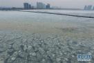 1月18日,国家海洋局北海预报中心海冰船舶调查队乘坐的中国海警1411船在辽东湾海域观测海冰。近日,辽东湾冰情持续发展。17日、18日两天记者跟随国家海洋局北海预报中心海冰船舶调查队在辽东湾海域进行观测。国家海洋局北海预报中心数据显示,18日辽东湾海冰外缘线32海里,面积6098平方公里,占辽东湾面积19.93%。据了解,目前辽东湾海冰冰情与常年同期相比偏轻,但冰情仍在持续发展中。国家海洋局北海预报中心海冰船舶调查队将开展为期10天的海冰观测,持续跟进海冰变化情况。新华社记者 潘昱龙 摄