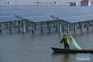 """渔民在浙江省慈溪市周巷水库长河水库""""渔光互补""""光伏发电项目水域捕鱼(2016年12月24日摄)。"""