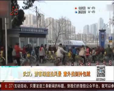 武汉:游客绿道拍风景意外拍到拎包贼