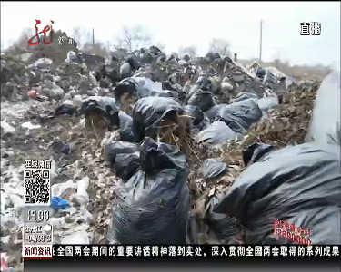 哈尔滨:居民楼后垃圾成山执法局协调清理