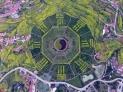 贵州仁怀农民巧手种出300亩大八卦图 高空航拍如七彩油画。
