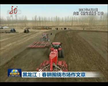 黑龙江:春耕围绕市场作文章