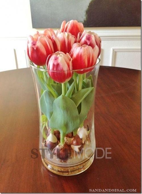 简单就好,玻璃的器皿很有质感又不会抢走鲜花的风头。前提是要干净!