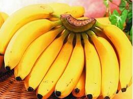 女性需补充荷尔蒙 日常可多吃这4种食物