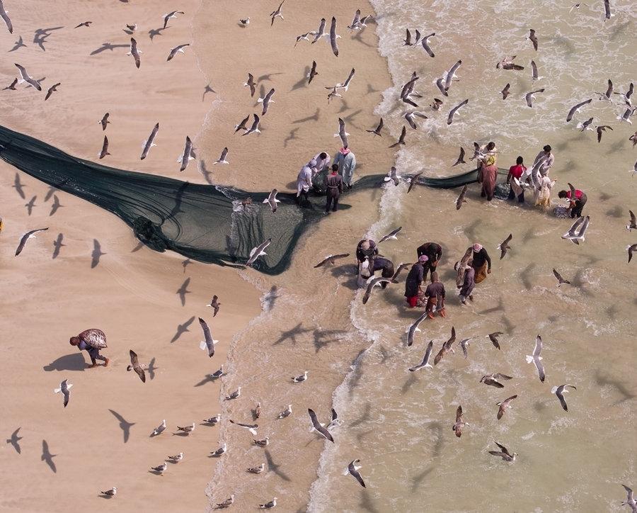 阿尔托奇运用了多部专业摄像机,包括一架无人飞行机,用俯瞰和特写拍摄了渔民们从海中捕获成千上万沙丁鱼的场景。这些鱼不仅在国内销售,也会出口到国外。