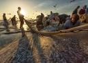 """阿尔托奇在2017年2月拍下这些照片,他说道:""""主船将鱼包围起来,赶至网的里面。网的两端由岸上的捕鱼队徒手拖拽,并用卡车装载捕上来的鱼""""。"""